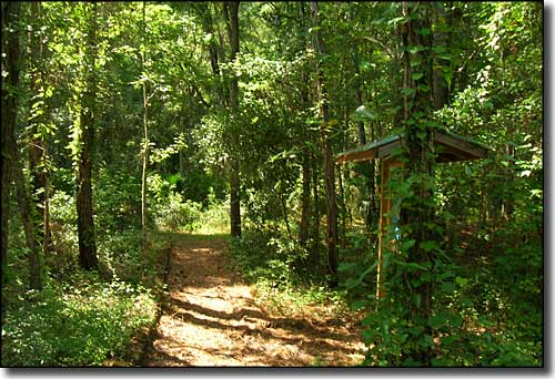 Suwannee River Trailhead