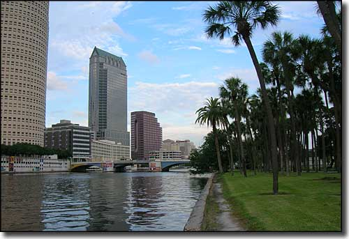 View along the Tampa River