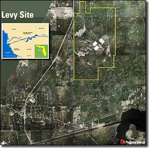 Site of the proposed nuclear energy plant in Levy County