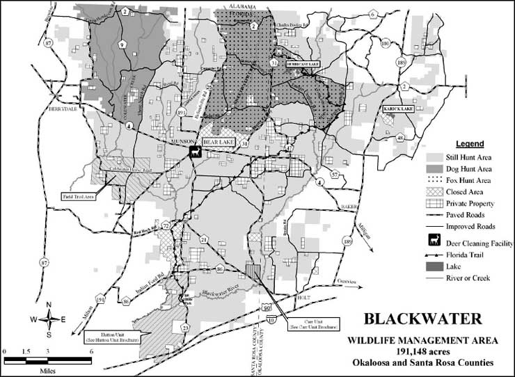 Blackwater Property Management