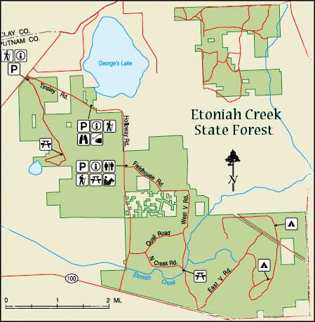 Etoniah Creek State Forest | Florida State Forests