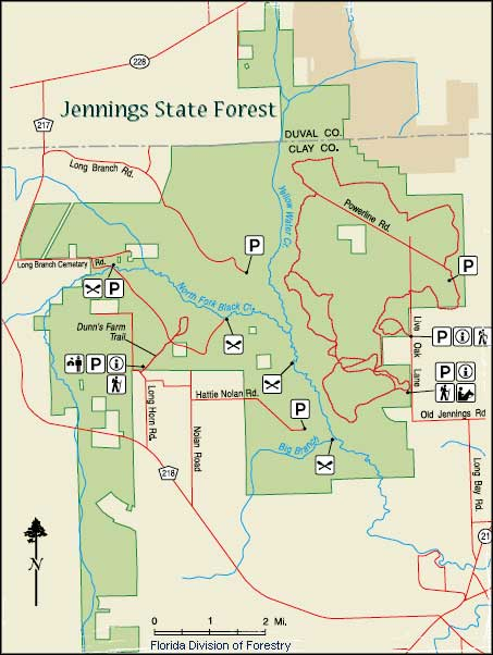 Jennings State Forest Florida State Forests