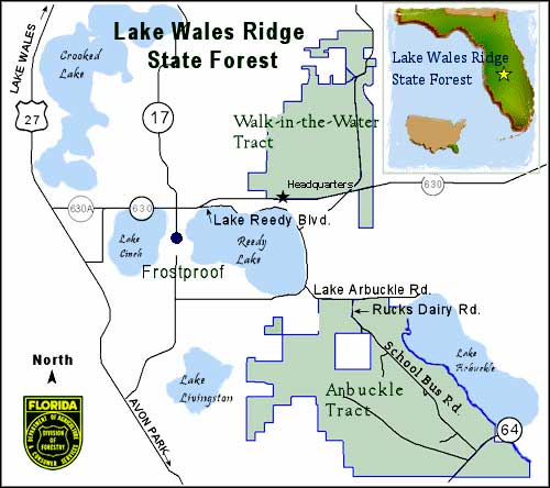 Frost Proof Florida Map.Lake Wales Ridge State Forest Florida State Forests