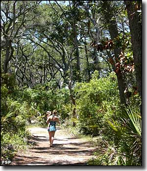 Hiking along the Blackrock Trail at Big Talbot Island State Park