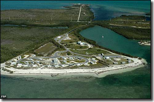 Aerial view of the campground at Curry Hammock State Park