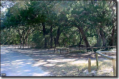 Campsites at Fort Clinch State Park