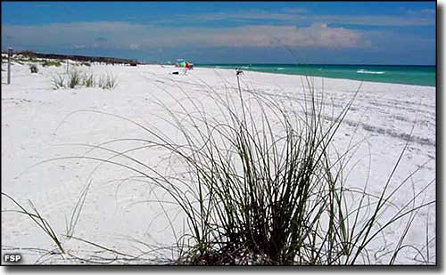 Henderson Beach State Park Florida State Parks