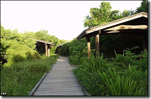 ADA accessible picnic pavilions at Long Key State Park