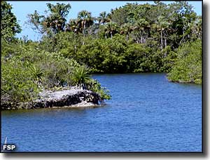 Backwaters on Lovers Key