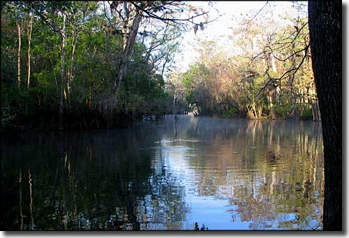 The spring run at Manatee Springs State Park