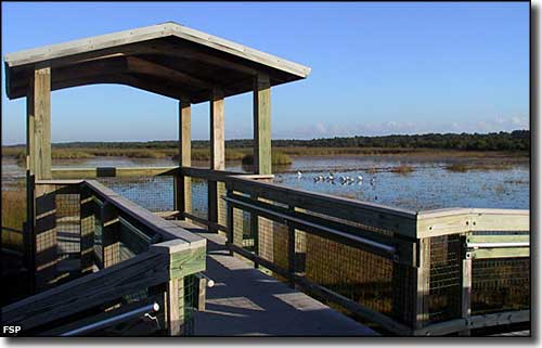 Canoe launch dock at Savannas Preserve State Park