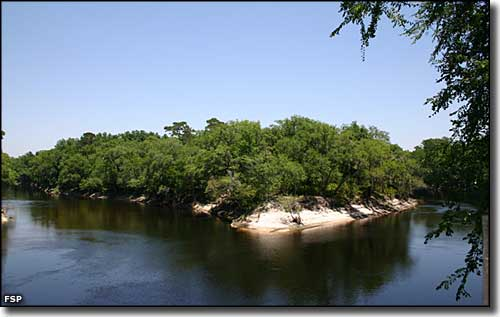 The confluence of the Withlacoochee and Suwannee Rivers in Suwannee River State Park