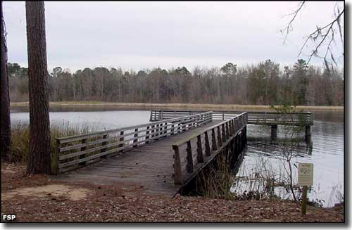 Another fishing pier at Three Rivers State Park