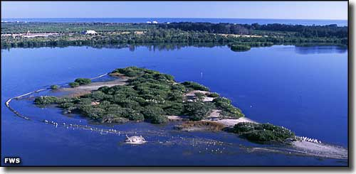 An aerial view of Pelican Island